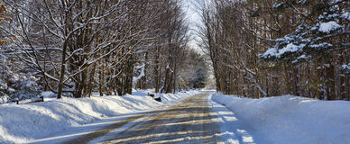 Western New York Winter. Freshly plowed road winds through snow covered trees in Western New York royalty free stock photos
