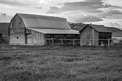 Western old black and white barn and farm. Black and white barn and farm in rural Wyoming, USA Stock Photos
