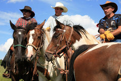 Western race horse - cowboy Royalty Free Stock Images