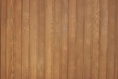 Western red cedar wood panel Stock Images