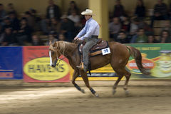 Western riding competition. NRHA Roleski 4 Spins - profesional,NRHA approved reining shows, takin plane in Stare Zukowice, Poland every year in May. This edition Stock Photos