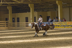 Western riding competition. NRHA Roleski 4 Spins - profesional,NRHA approved reining shows, takin plane in Stare Zukowice, Poland every year in May. This edition Royalty Free Stock Images