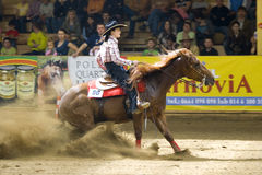 Western riding competition. NRHA Roleski 4 Spins - profesional,NRHA approved reining shows, takin plane in Stare Zukowice, Poland every year in May. This edition Royalty Free Stock Image
