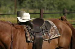 Western Saddle. Blanket, and hat on horse in Montana Royalty Free Stock Photo