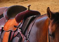 Western saddle on a horse stock images