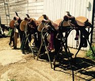 Western Saddles. Four Western saddles in front of a barn royalty free stock photo