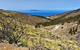 Western slopes of Teide national Park Via Atlantic Ocean Stock Photography