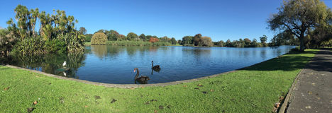 Western Springs park in Auckland New Zealand Royalty Free Stock Images