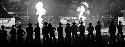 Western Stock Show in Denver. Denver, Colorado - January 15: Cowboys compete in the steer roping event at the Great Western Stock Show in Denver, Colorado on Royalty Free Stock Image