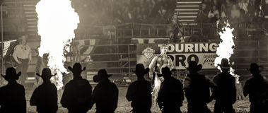 Western Stock Show in Denver. Royalty Free Stock Photography