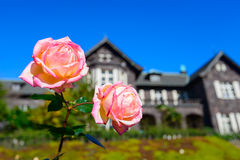 Western-style house and Rose in the Kyu-Furukawa Gardens, Tokyo Stock Photo