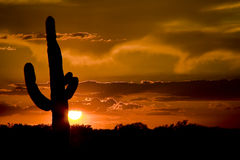 Western USA Sunset Stock Photos