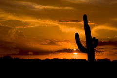 Western USA Sunset Stock Photo