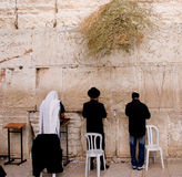 Western Wall. Jews praying at the Western Wall royalty free stock images