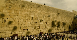 Western wall. The western wall in jerusalem - the holy place of the jewish Stock Image