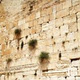 Western wall. Close up of Western wall. Jerusalem. Israel Royalty Free Stock Photography