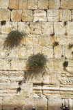 The western wall of the Jerusalem Royalty Free Stock Photos