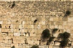 Western Wall in Jerusalem. Western Wall  background in Jerusalem. Israel Royalty Free Stock Images
