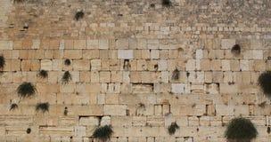 Western Wall. Of Jerusalem,  Israel Royalty Free Stock Photo