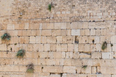 Western Wall, Jerusalem Royalty Free Stock Photos