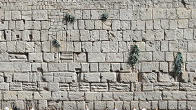 Western Wall in Mini Israel. Royalty Free Stock Photos