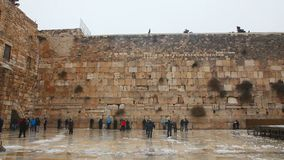 The Western Wall with praying pilgrims stock video