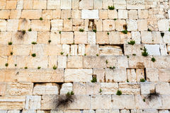 Western wall . Travel to Jerusalem. Israel. Royalty Free Stock Photography