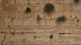 The Western wall or Wailing wall is the holiest place to Judaism in the old city of Jerusalem, Israel stock images
