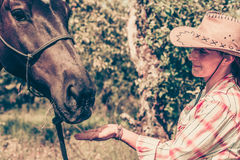 Western woman taking care of horse on meadow. Animal and human love, equine concept. Western woman taking care of horse on green meadow Stock Image