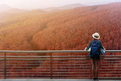 Westerner traveller woman with map in hand admiring view of atumn landscape in japan stock photography