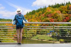 Westerner traveller woman with map in hand admiring view of atumn landscape in japan stock image