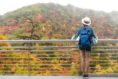 Westerner traveller woman with map in hand admiring view of atumn landscape in japan stock photos