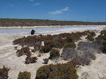 Westernmost Point, Shark Bay, Western Australia Stock Photography