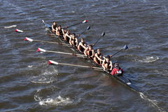 Westford Community Rowing Crew races in the Head of Charles Regatta Men`s Youth Eights Royalty Free Stock Photo