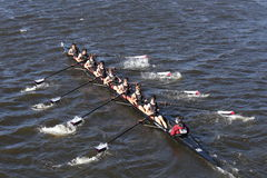 Westford Community Rowing Crew races in the Head of Charles Regatta Men`s Youth Eights Stock Images
