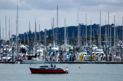 Westhaven小游艇船坞奥克兰新西兰 免版税库存照片