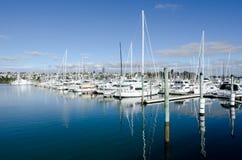 Westhaven小游艇船坞-奥克兰 免版税库存照片