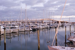 Westhaven Dawn. Westhaven Marina and Auckland Harbour Bridge at Dawn stock images