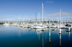 Westhaven Marina - Auckland Royalty Free Stock Photo