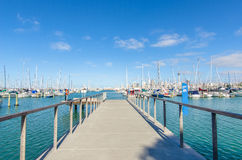 Westhaven Marina is the largest yacht marina in Auckland,New Zealand. Auckland,New Zealand - October 25,2015 : Westhaven Marina is the largest yacht marina in Stock Image