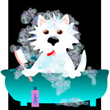Westie Bubble Bath Stock Images