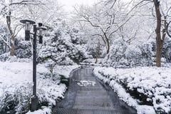 Westlake-Schneetag stockbild