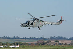 Westland Lynx lands Royalty Free Stock Images