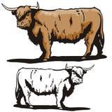 Westliche Abbildungserie Stockfotografie