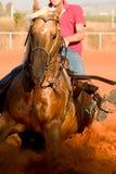 Westliche Art-Pferden-Fahrt lizenzfreies stockbild