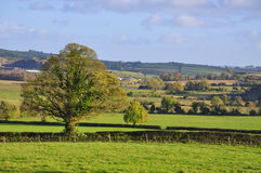 Westmeath Landscape Royalty Free Stock Images