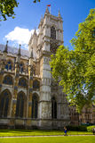 Westminster abbey, view form the park Royalty Free Stock Images