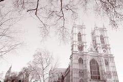 Westminster abbotskloster, London; England; UK Arkivfoto