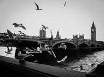 Westminster bridge. And house of Parlaiment Stock Photos