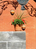 Westmount home exterior. Home exterior with flower pot Royalty Free Stock Photos